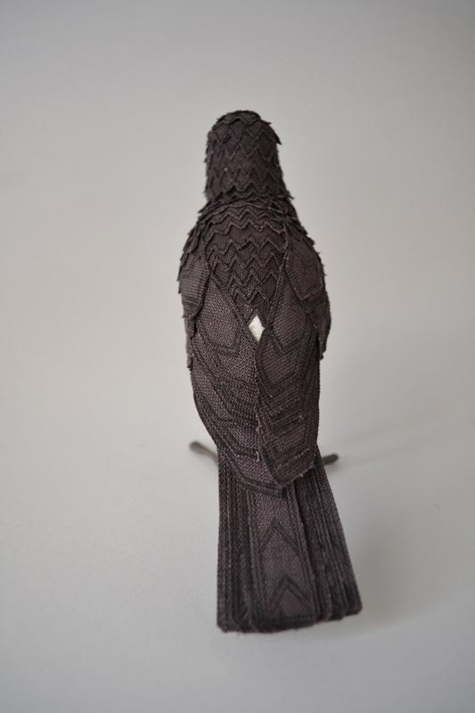 woodswallow2